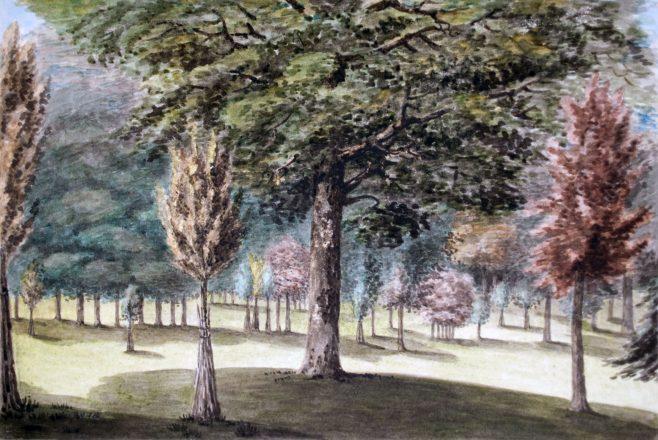 Turvey Abbey Park