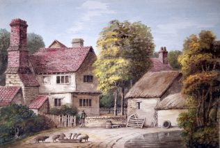 Farmyard Scene with  Pond