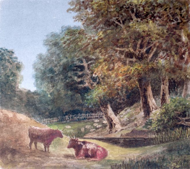 Cattle and Sheep by River