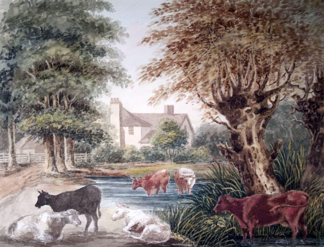 River Scene with Cattle
