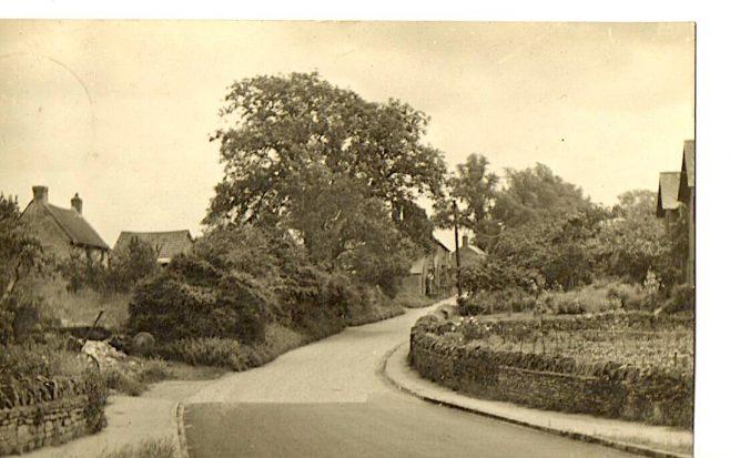 Newton Lane
