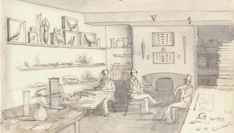 """""""The 'doctor' will see you now"""": Medical care in Turvey in the 1830's."""